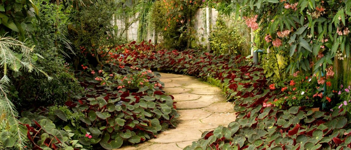 Place a garden path for a home improvement on a budget