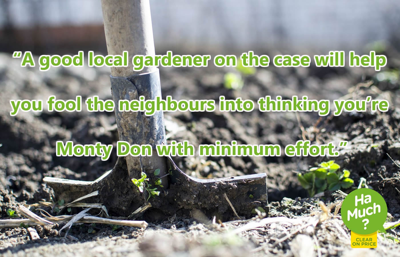A good local gardener on the case will help you fool the neighbour into thinking you're Monty Don with minimum effort