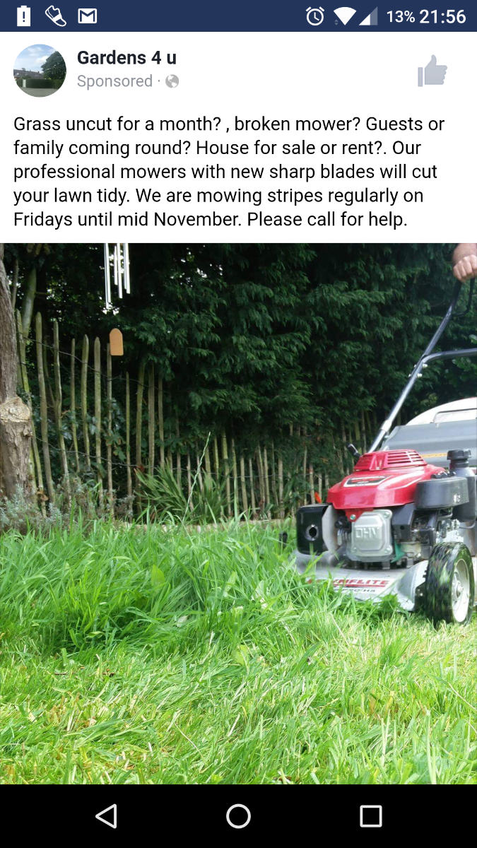 Temporary Illness, holiday, or occasional mowing