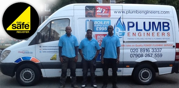 Business Van & Staff