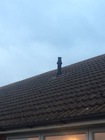 Flue terminal through pitched roof for above boiler